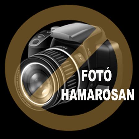 Műanyag első kosár fedeles piros