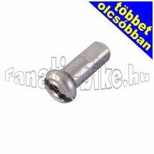 DT Swiss nikkel küllőanya 2x12 mm ezüst